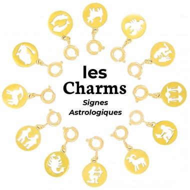 Charms Acier Inox Signes Astro