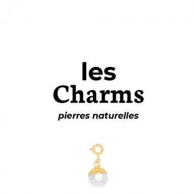 Charms Acier Inox Pierres...